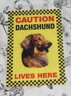 CAUTION GOLDEN  LABRADOR, YELLOW LABRADOR, LIVES HERE -  DOG SIGN